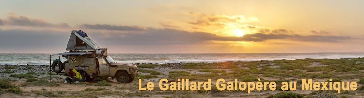 Le Gaillard Galopère au Mexique