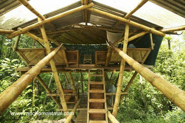 Casa del árbol hecha con cañas de bambú