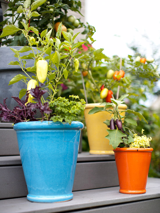 Cottage Garden Fresh Ideas For Growing Vegetables In Containers