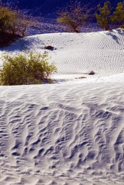 Mesquite Dunes 099