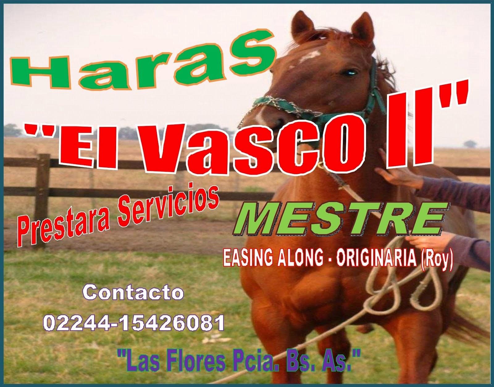 Haras El Vasco II