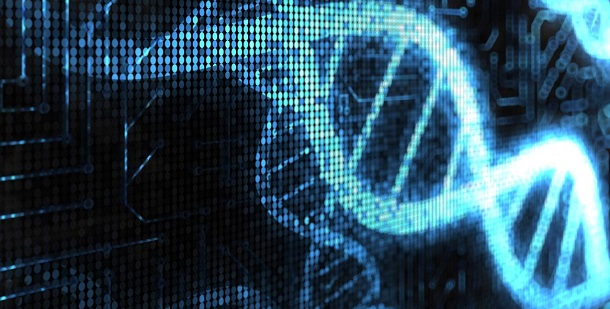 ADN: Definição, Estrutura e Descoberta