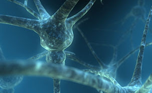 How Alzheimer's Disease Kills Brain Cells