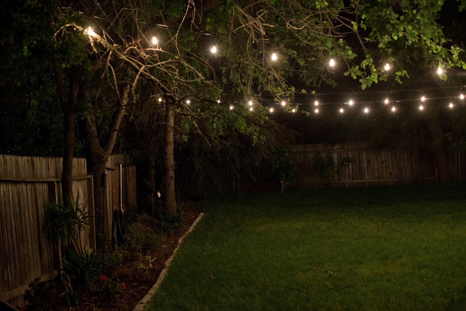 Vintage Backyard Lights : Novelty Lights  We purchased these lights and these bases (the lights