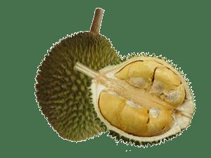 http://3.bp.blogspot.com/-NelVQLq7pkY/Thm-JSkb2uI/AAAAAAAAA-w/2TX2DuxC3hQ/s400/durian-fruit-opened-300.png