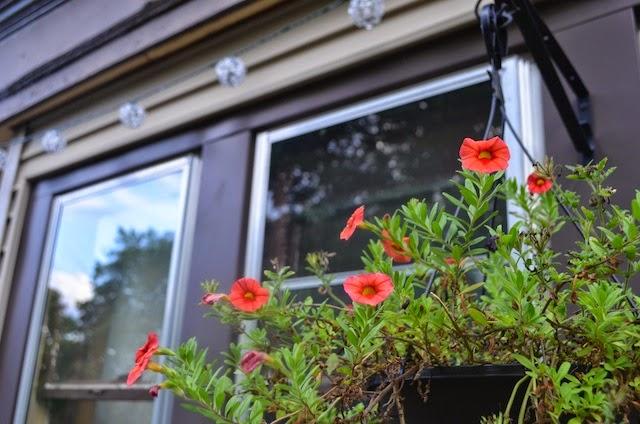 http://www.findingjoyinallthings.com/2014/09/porch-garden.html
