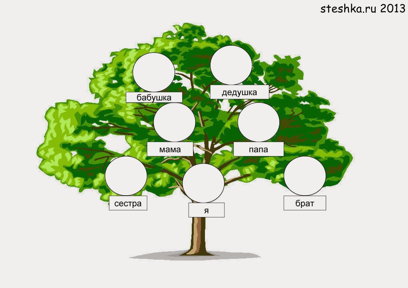 как оформить родословное дерево своими руками на листе