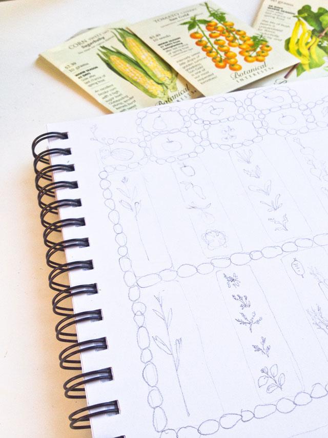 sketching my spring garden