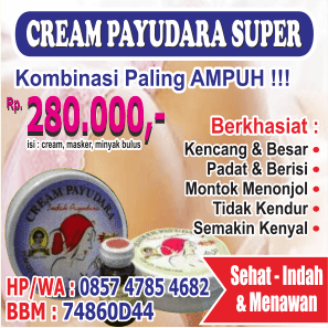 Paket Cream Payudara Super