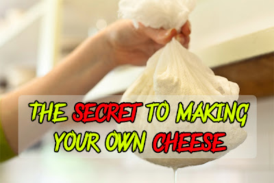 The secret to making your own cheese
