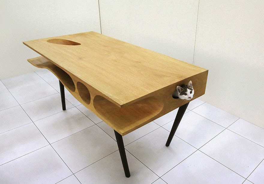 Cat Play Table