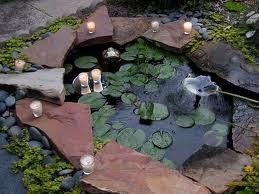 contoh desain kolam ikan mas koi minimalis ~ hobi burung