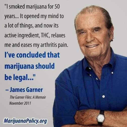 Mr x cannabis essay