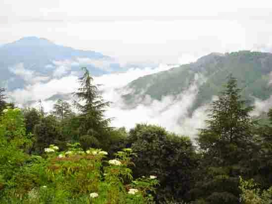 Attractions in Chail