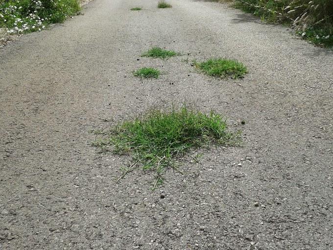 Nakon betonske ceste Šipovača dobila i eko-asfalt
