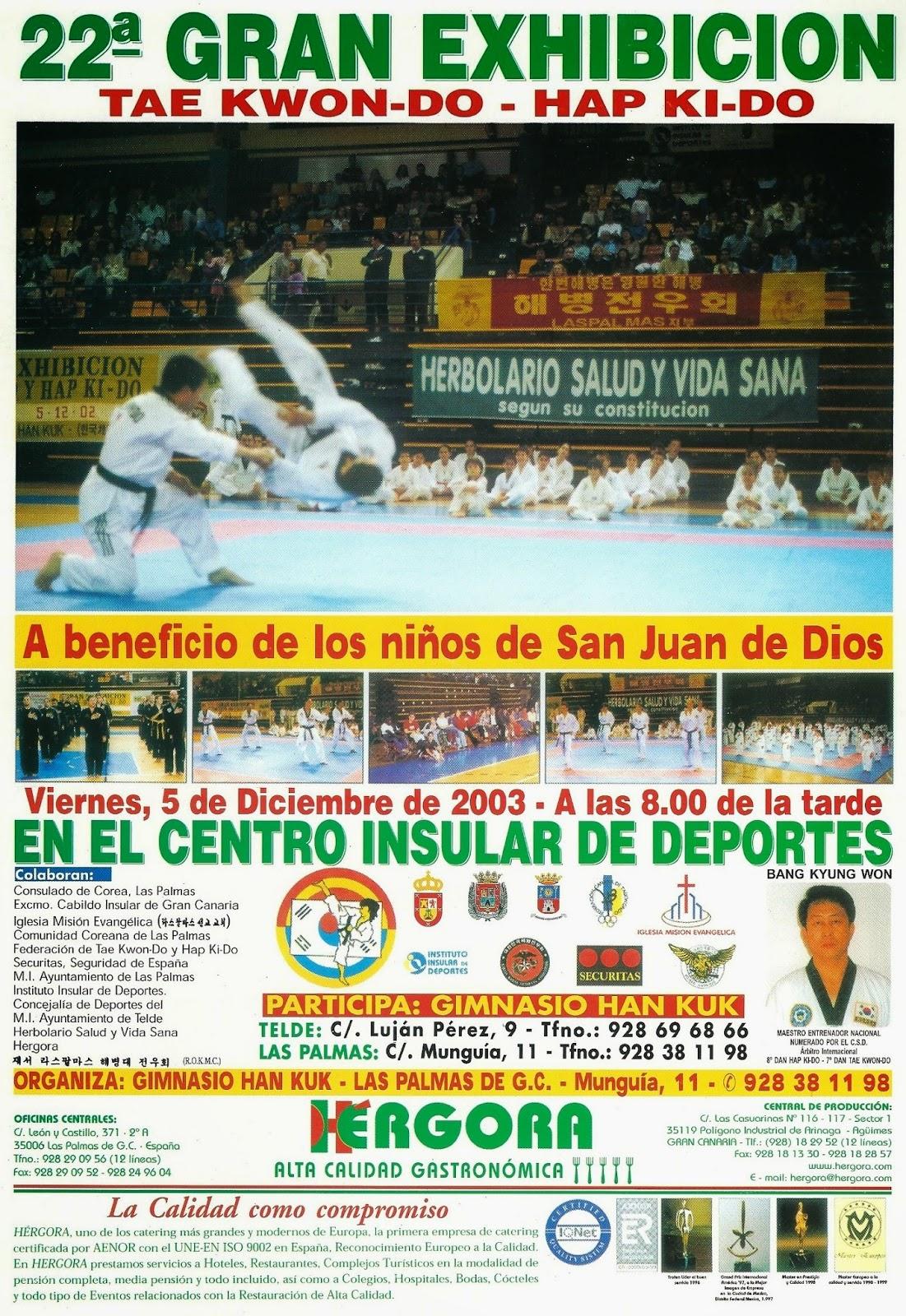 Gimnasio han kuk hapkido taekwondo a o 2003 presentaci n for Gimnasio telde