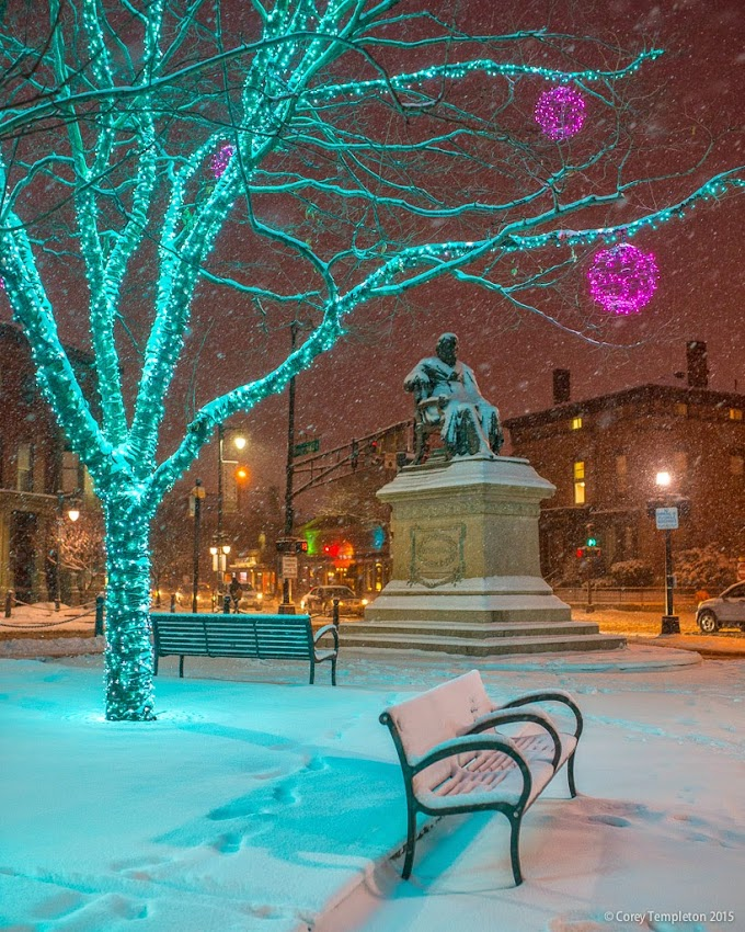 Portland, Maine January 2015 Snow in Longfellow Square at Night photo by Corey Templeton