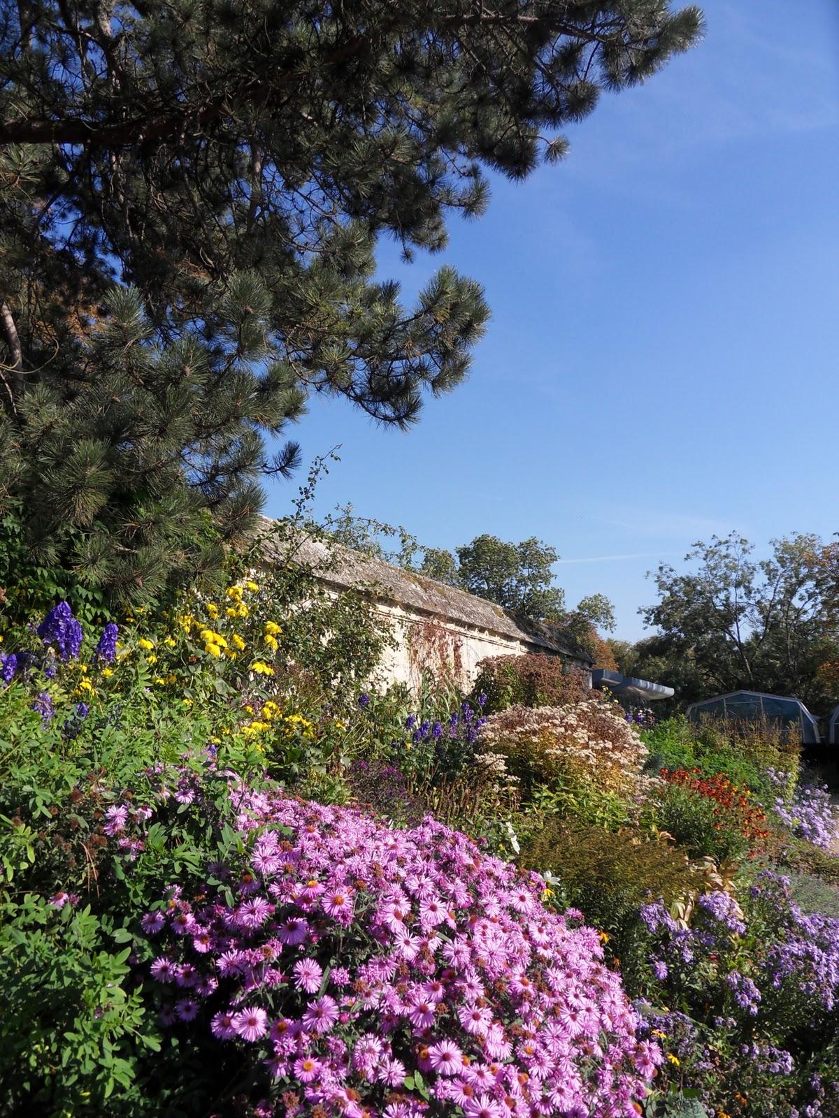 http://3.bp.blogspot.com/-NgcATvIxIzE/Toi4HUZGYHI/AAAAAAAAfqk/zpxY0K180ag/s1600/Botanic+Garden.JPG