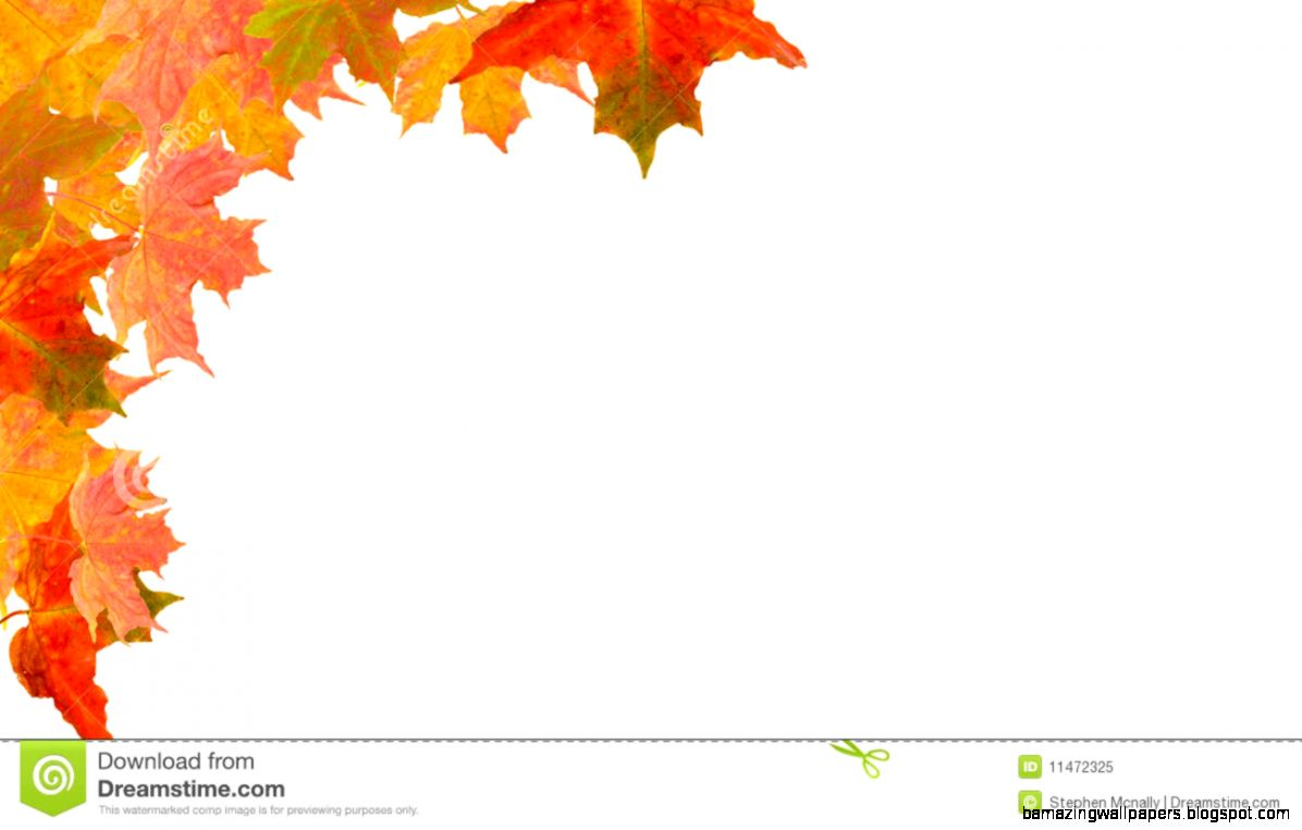Autumn Corner Border Royalty Free Stock Photo   Image 11472325