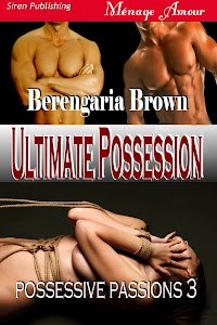 Possessive Passions book 3
