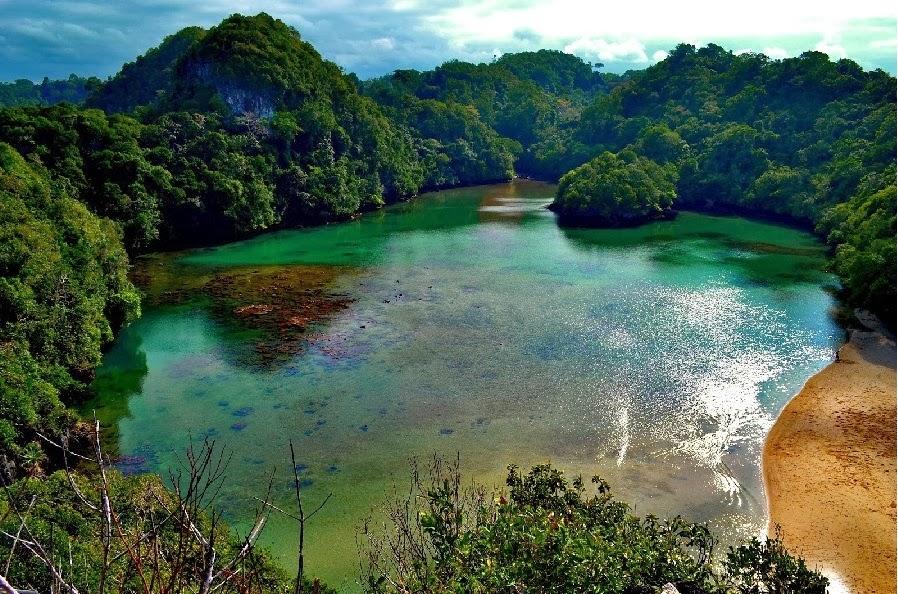 Pulau Sempu, Surga Tersembunyi di Balik Hutan