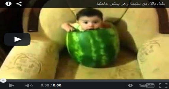 فيديو مضحك جدا: طفل يأكل من بطيخة وهو يجلس بداخلها :D