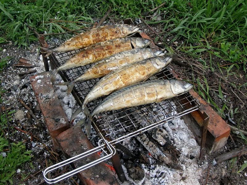 Рыба на костре рецепты