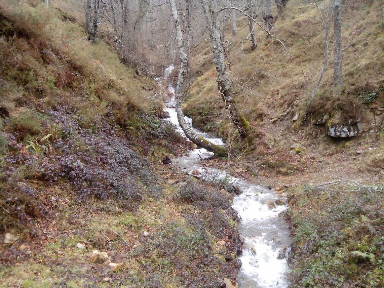 El-arroyo-Juzmeana-en-la-Reserva-Natural-de-Saja