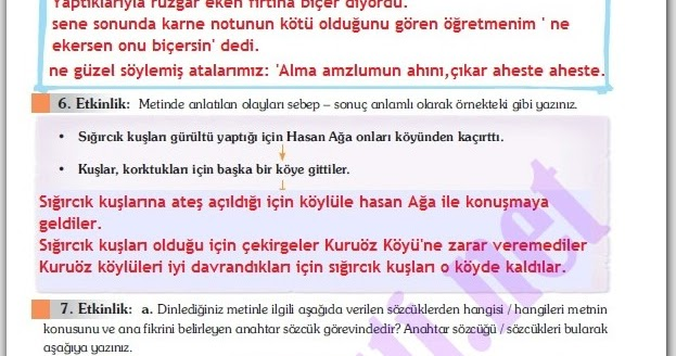 Turkce forex kitabi