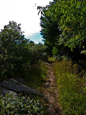 The Quinnipiac Trail, in Sleeping Giant Park