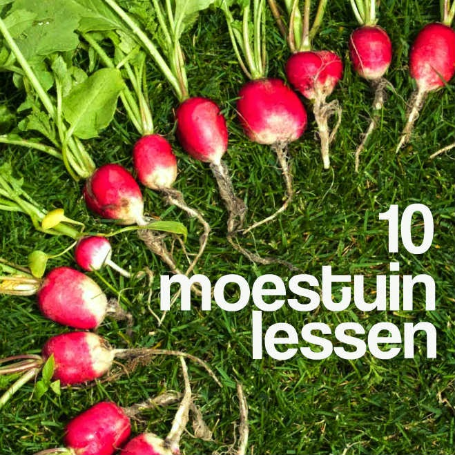 10 moestuinlessen tips