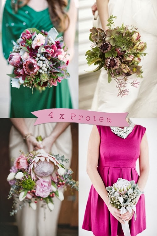 bukett protea, bouquet proeta