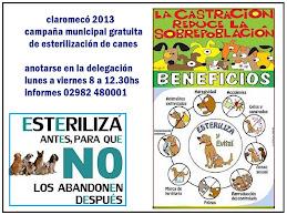 claromecó, campaña 2013 de esterilización de canes