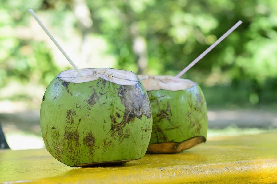 Fresh Coconut Water (Buko Juice)