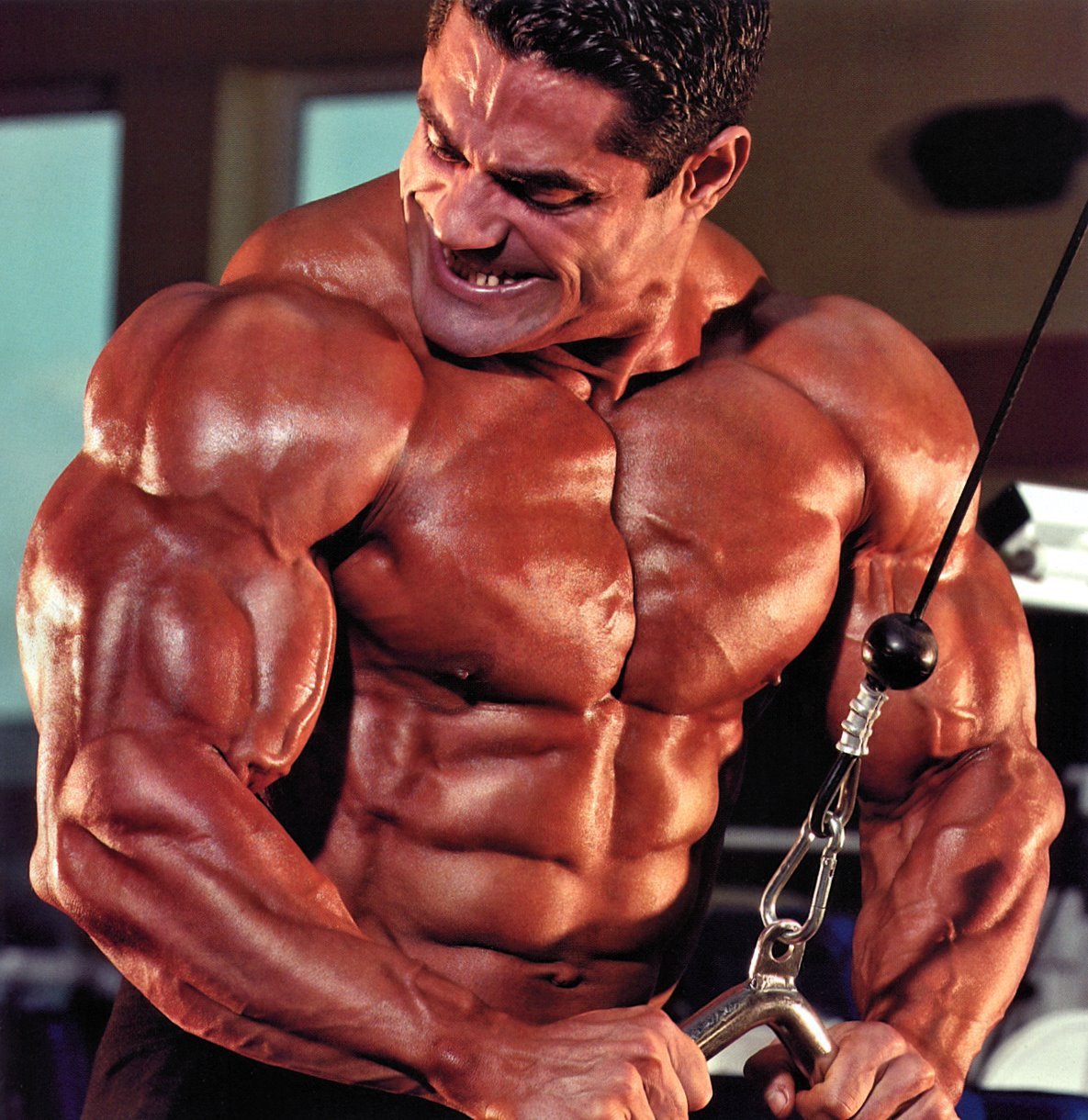 The Beauty Of Male Muscle Gustavo