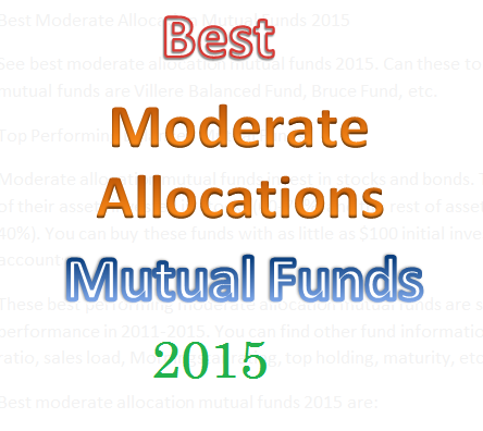 Best Moderate Allocation Mutual Funds 2015