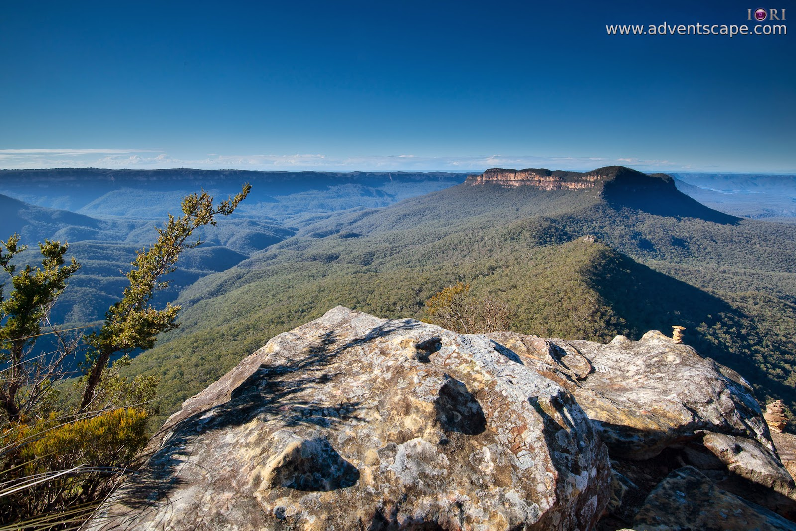 2780, Australia, Australian Landscape Photographer, blogger, Blue Mountain, bushwalk, Castle Head, gate, Glenraphael, Katoomba, lookout, Narrow Neck, New South Wales, NSW, Philip Avellana, sunrise, plants