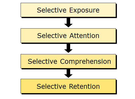 selective perception examples Selective perception is a form of bias that causes people to perceive messages and actions according to their frame of reference using selective perception, people tend to overlook or forget.