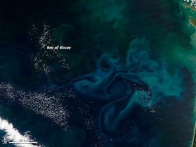Bloom de fitoplancton en el Golfo de Vizcaya