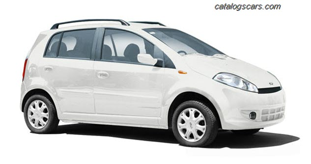 ��� ����� �������� A113 2011 - ���� ������ ��� ����� �������� A113 2011 - Speranza A113 Photos