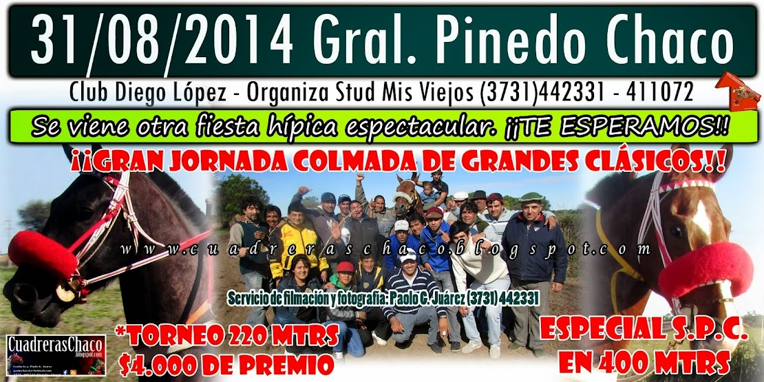 31-8-14 PINEDO