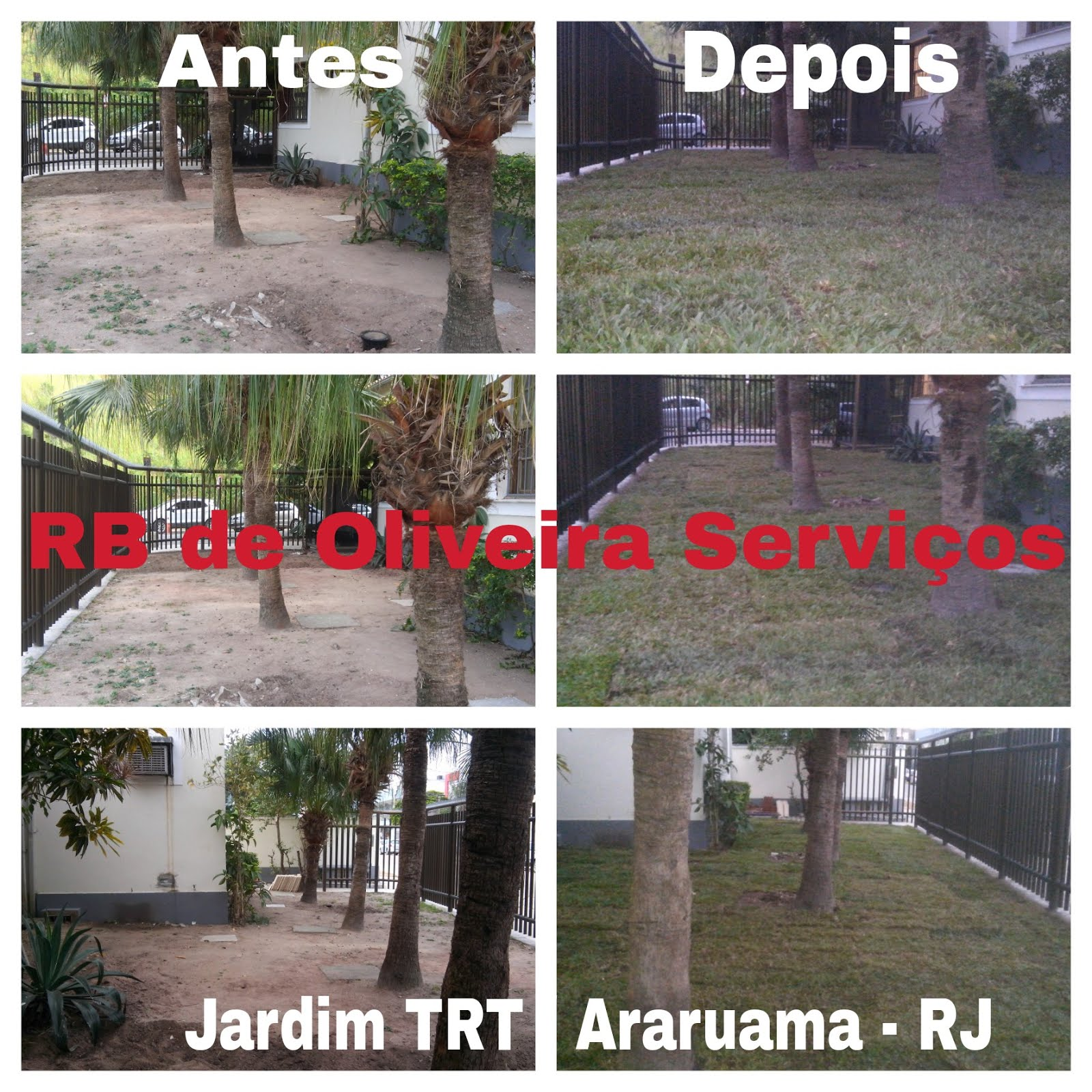 Preparação do solo e plantio de grama São Carlos no Jardim do TRT  #B21928 1600x1600