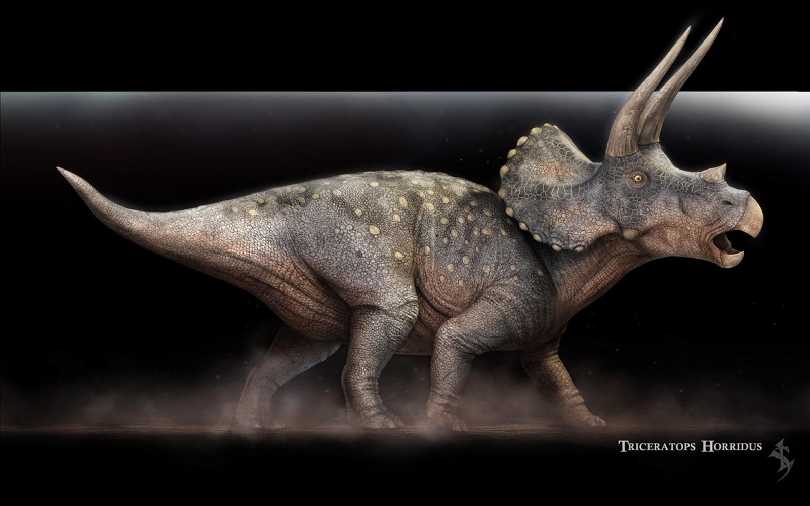 Parque dos dinossauros completo online dating 6