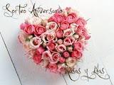 Sorteo de Rosas y lilas