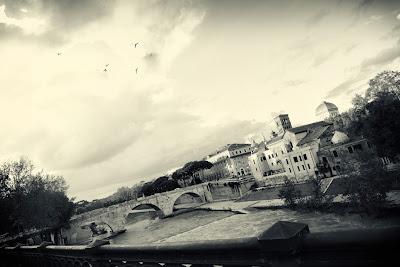 Nel cielo, in alto a sinistra, volo di gabbiani diretti all'isola