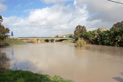 Autovía Jerez - Arcos. Puente sobre el Salado. (diciembre 2009)
