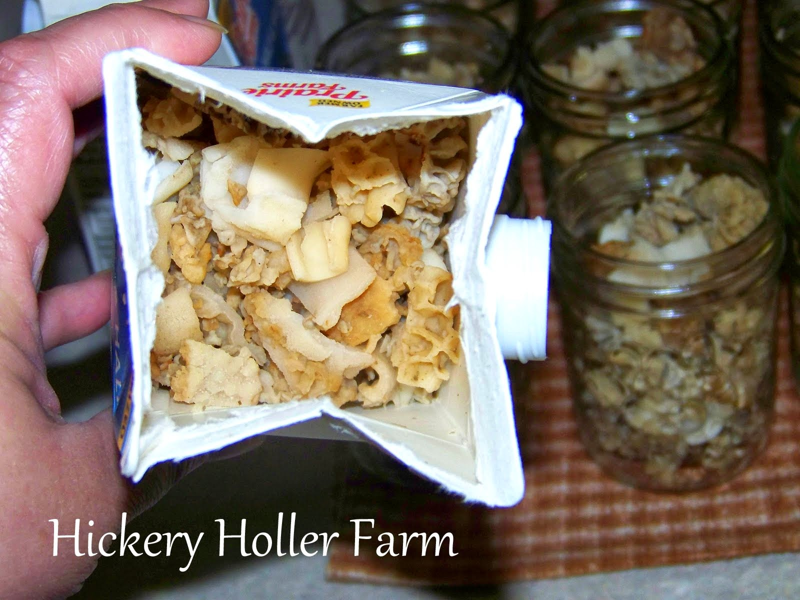 How to freeze mushrooms for the winter. Cooking Frozen Mushrooms 31