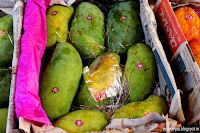 Haati Jhullah Aam, mangoes