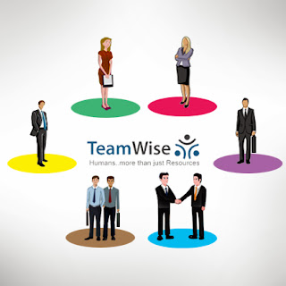 http://trogonsoft.com/teamwise/talent-management/