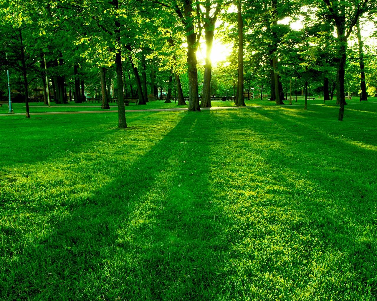 http://3.bp.blogspot.com/-NkpCPmqFbnM/UGUepK9BGcI/AAAAAAAAHeI/QeTaYKfwJWU/s1600/Nature-wallpaper-87.jpg